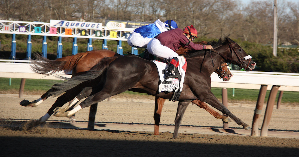Aqueduct plays host to nine races on Sunday.